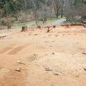 Forgotten graves at University of Virginia likely belonged to black slaves